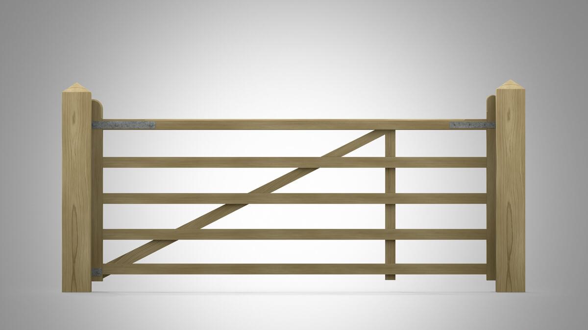 Pattern No 22 Light Field Gate Rear